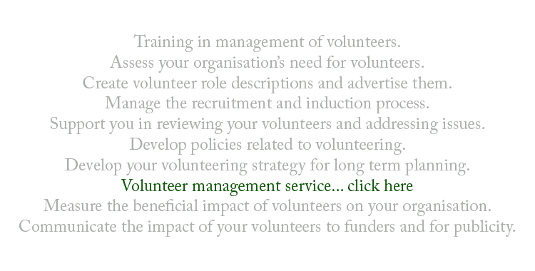 Volunteer Management (Consultancy)